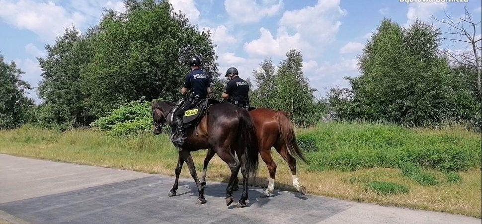 Dąbrowa Górnicza: Wyjątkowi strażnicy porządku